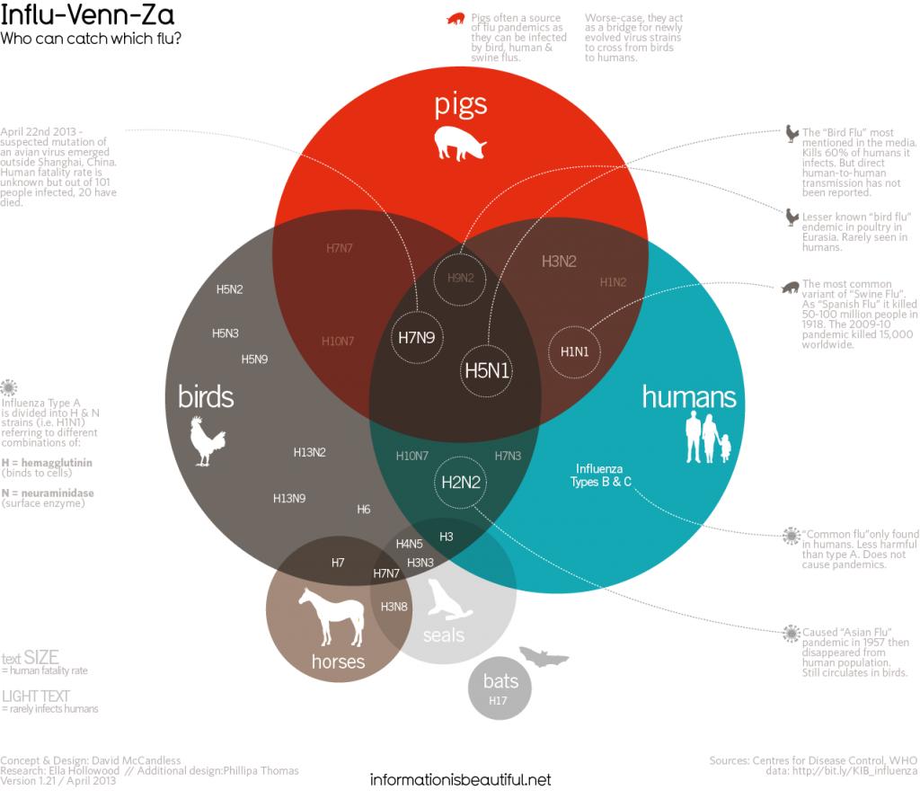 Data Visualization: tudo o que você precisa saber para otimizar a apresentação dos seus dados