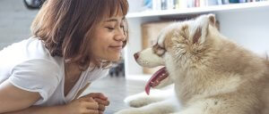 Modelo de questionário de pesquisa: pesquisa sobre animais de estimação