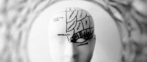 Case de pesquisa de mercado: Opinion Box e a Inspiração