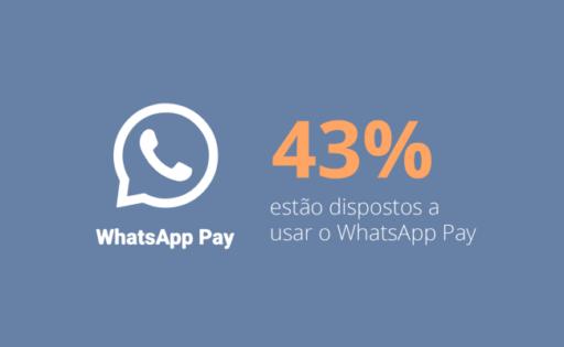 Pesquisa Meios de Pagamento no Brasil: dados sobre os principais meios de pagamento do consumidor brasileiro em 2021